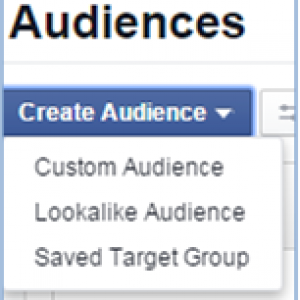 create-audience
