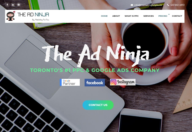 The Ad Ninja